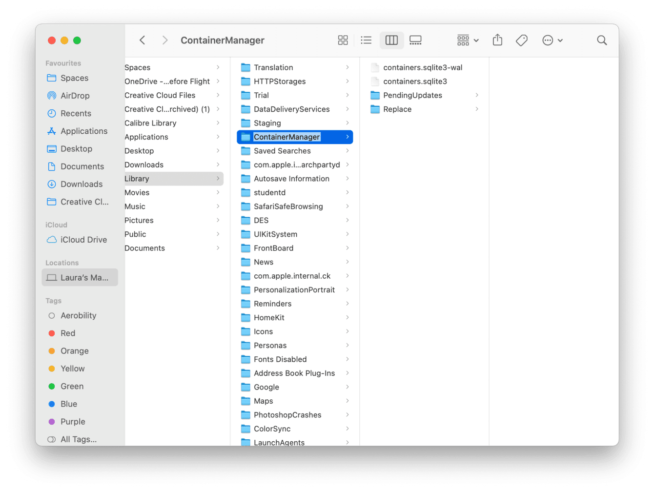 Container manager folder